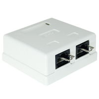 2 Port Cat6 UTP Surface Mount Box with Lock, 110 Type - White