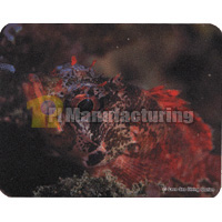 Mouse Pad with Fish Design, 230 x 180 x 3 mm