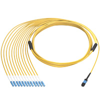 MTP / MPO 9/125 OS2 Singlemode Fiber Optic Cable, Plenum OFNP,12 Fiber, 100 meter Female to Female Type B
